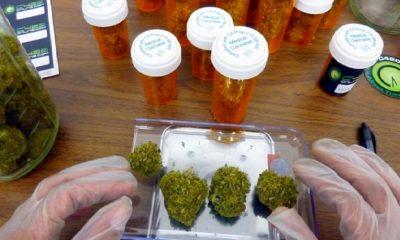 Aprueban primer producto derivado de cannabis en Perú