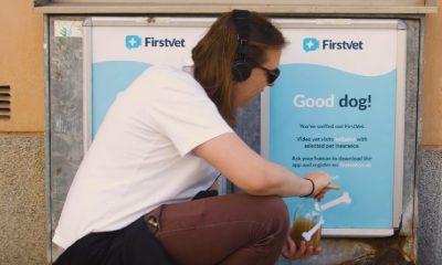 El primer y mejor anuncio para perros creado en la historia
